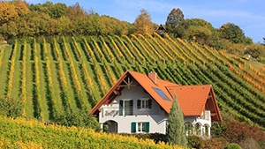 Luxembourg Vineyards for Sale